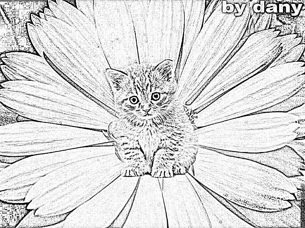 90 dessins de coloriage imprimer chat imprimer - Chat a colorier adulte ...