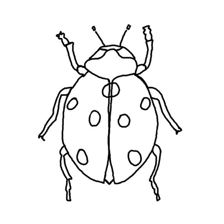 99 dessins de coloriage abeille facile imprimer - Dessin coccinelle facile ...