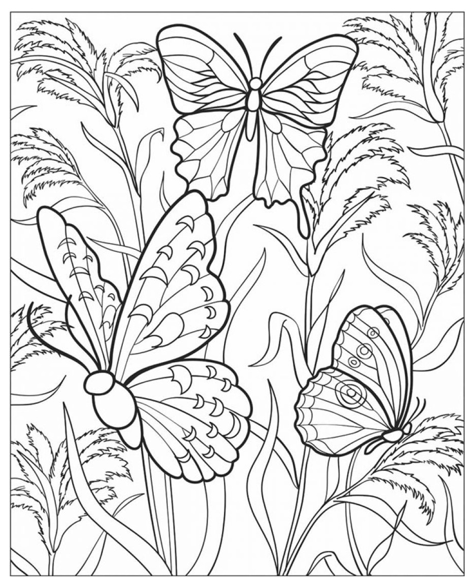 coloring pages detailed butterfly - photo#16