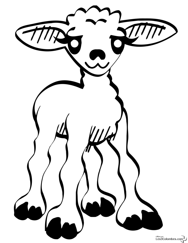 coloriage � dessiner brebis agneau