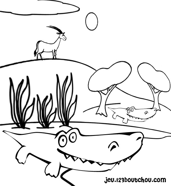 coloriage à imprimer alligator