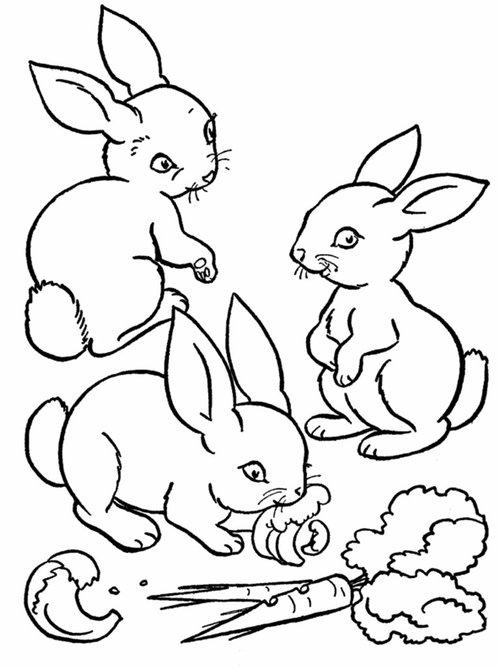 92 dessins de coloriage animaux imprimer gratuit imprimer - Coloriage gratuit a imprimer ...