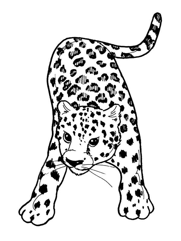 92 dessins de coloriage Animaux à Imprimer Gratuit à imprimer