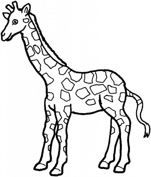 95 dessins de coloriage animaux d 39 afrique imprimer - Animaux afrique maternelle ...