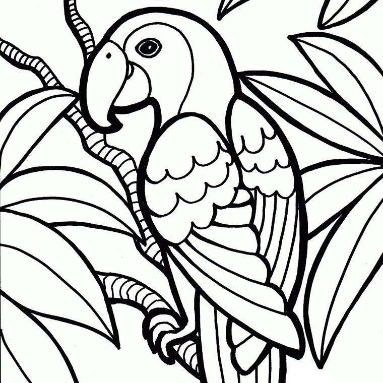 94 dessins de coloriage Animaux