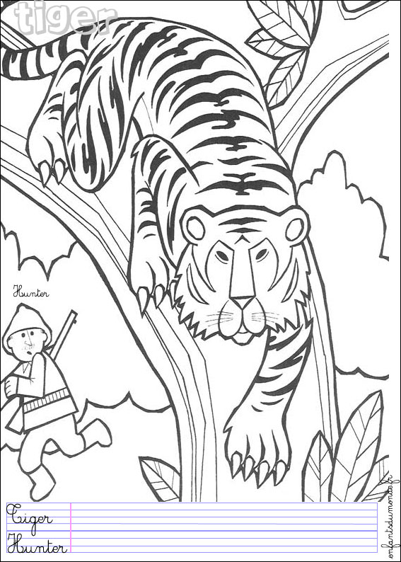 94 dessins de coloriage animaux de la jungle imprimer - Coloriage animaux de la jungle ...