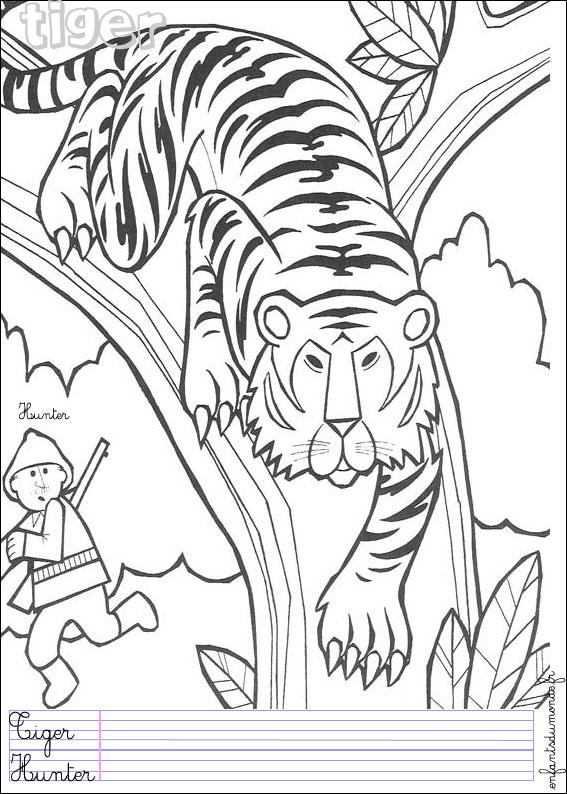 94 dessins de coloriage animaux de la jungle imprimer - Jeux des as de la jungle ...