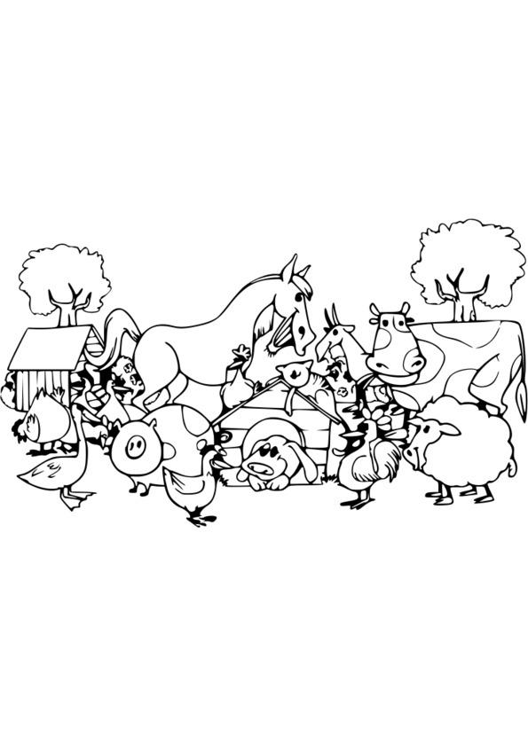 coloriage animaux humoristiques
