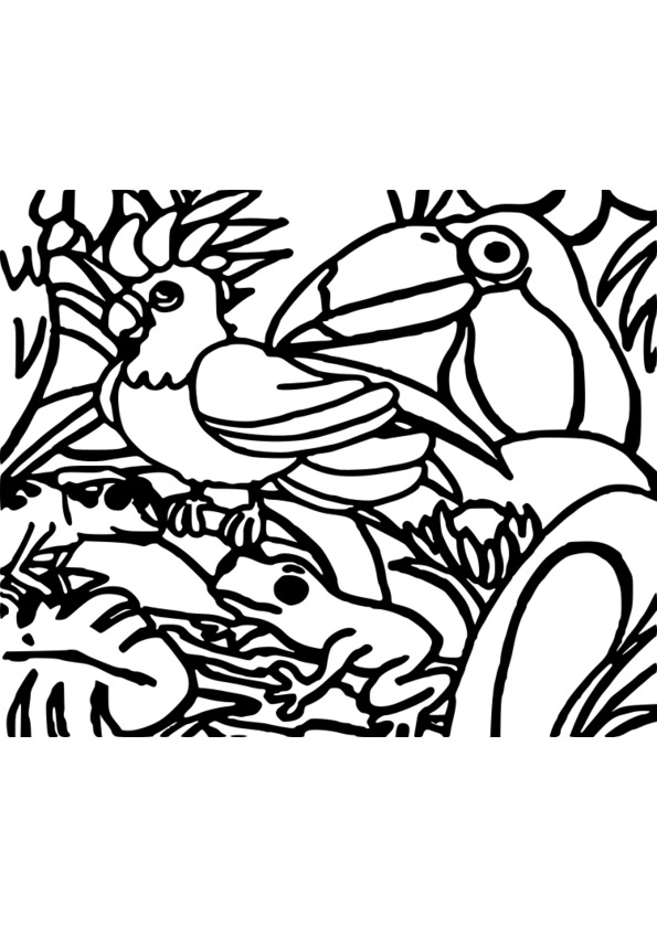 coloriage animaux 3 ans
