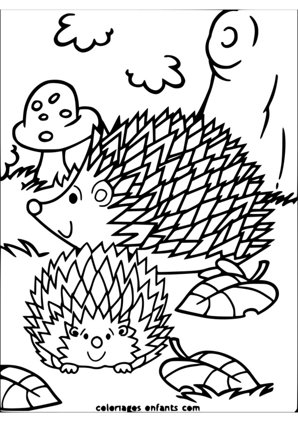 coloriage animaux du zoo