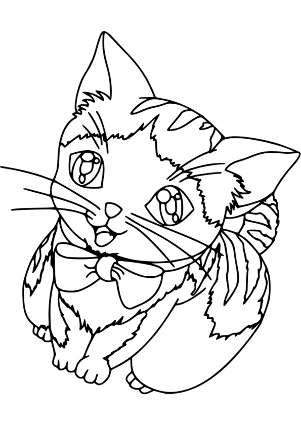 coloriage animaux tv
