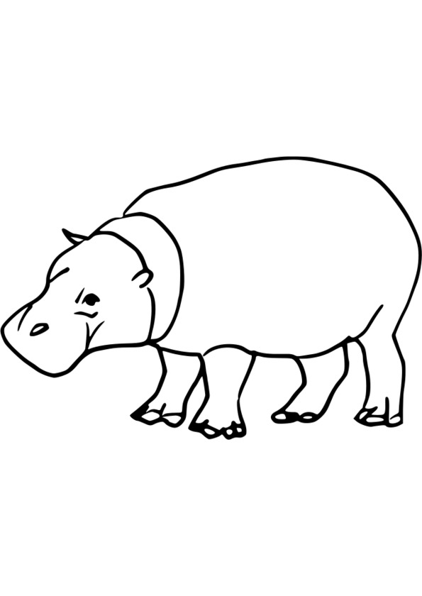 Coloriage animaux guyane - Coloriage d animaux ...