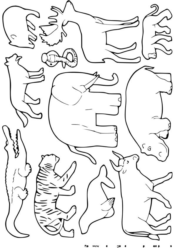 coloriage à imprimer animaux sauvages