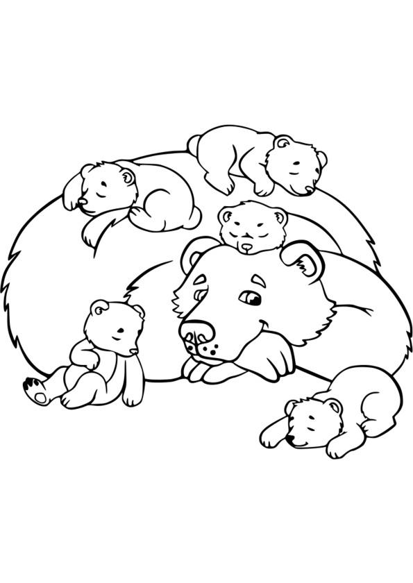 coloriage � dessiner adulte animaux � imprimer