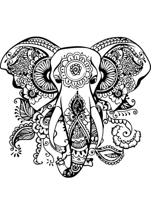 dessin animaux de la savane