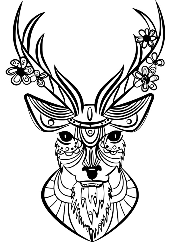 image coloriage � dessiner animaux