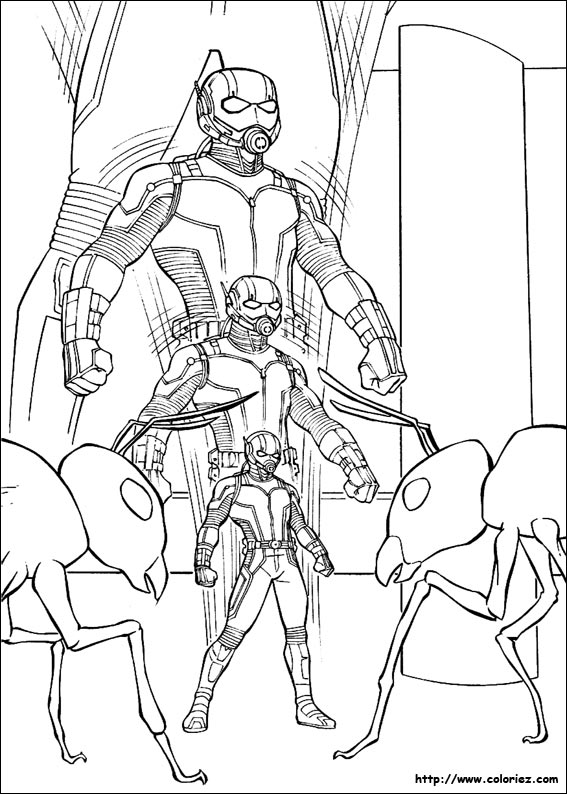coloriage ant man