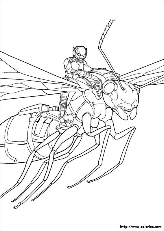 dessin à colorier ant man