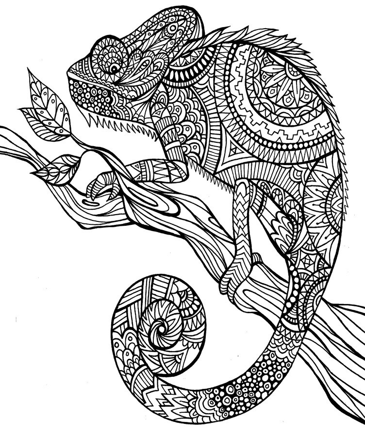 coloriage anti stress animaux tigre