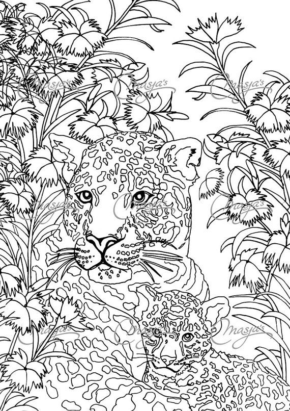 coloriage à dessiner anti stress hachette