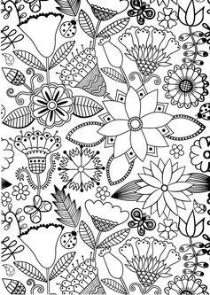 100 dessin à coloriers anti-stress hachette loisirs