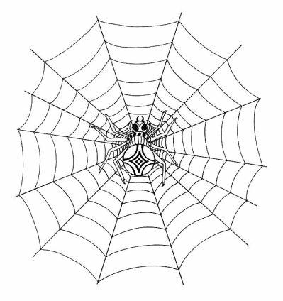 87 dessins de coloriage araign 233 e toile 224 imprimer