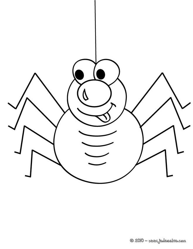 dessin à colorier araignée gratuit