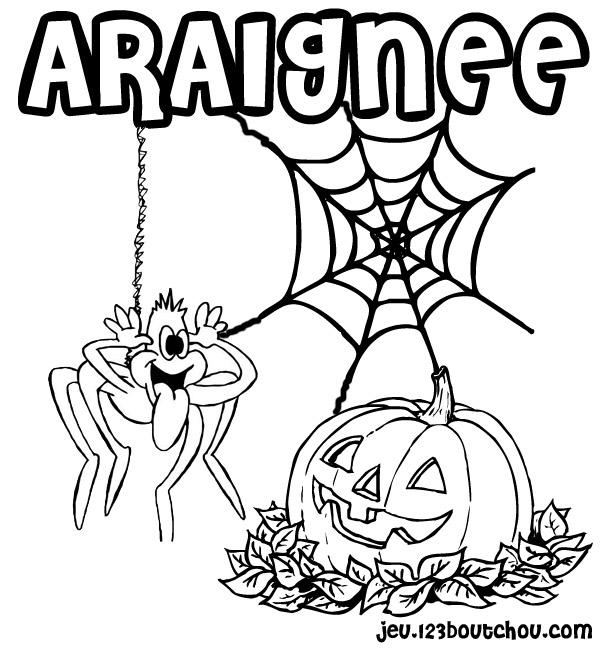 coloriage à dessiner toile d'araignée imprimer