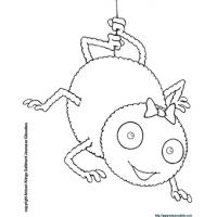 coloriage à dessiner l'araignée gipsy
