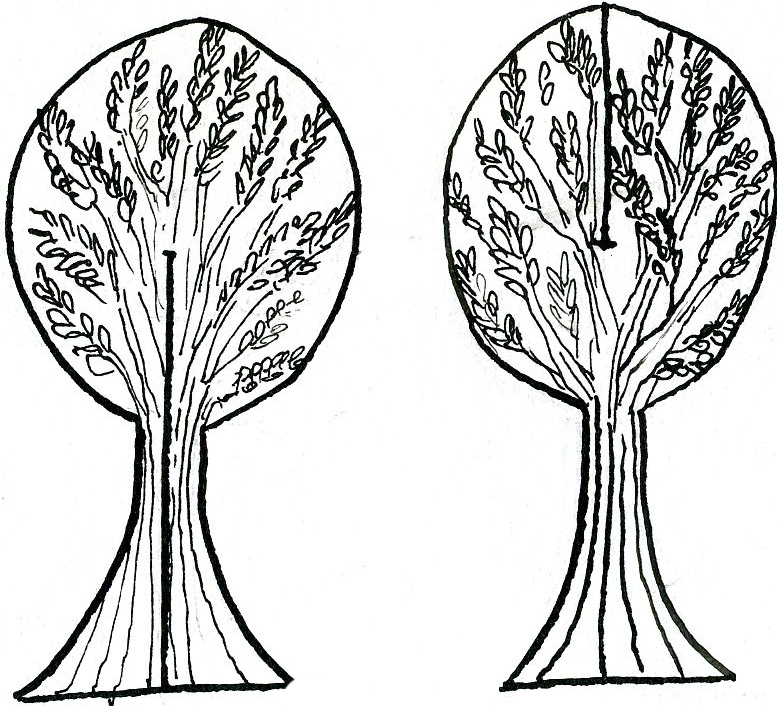 95 dessins de coloriage arbre g n alogique imprimer - Arbre genealogique dessin ...