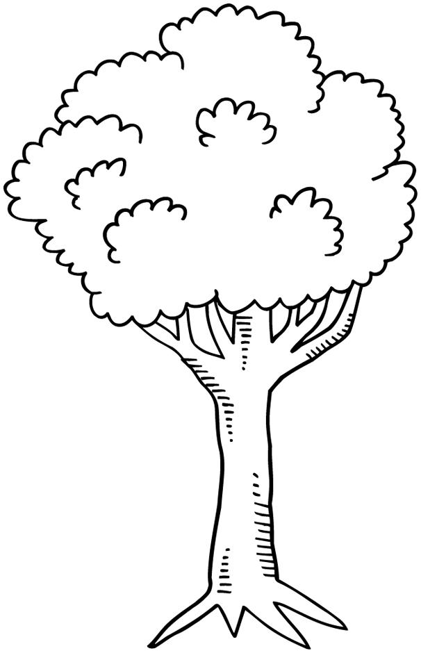 Coloriage arbre de la jungle - Coloriage saisons a imprimer ...