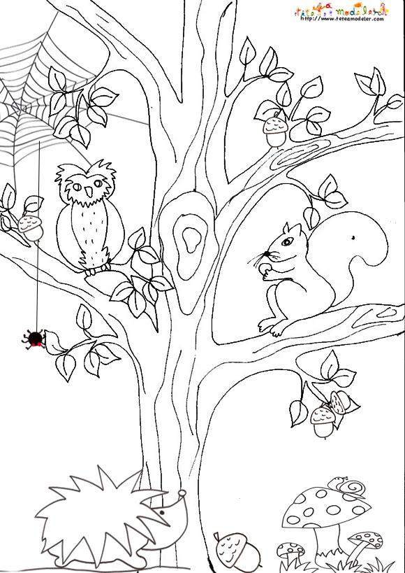 dessin automne cycle 2