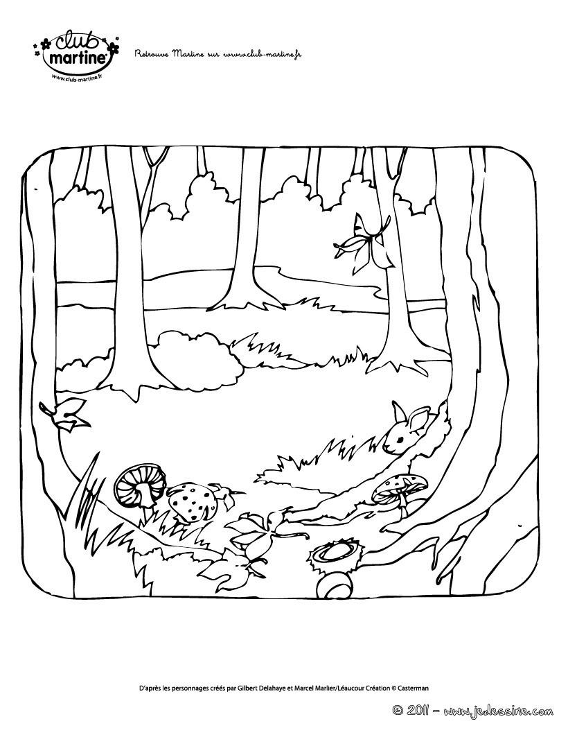 Dessin colorier automne gratuit imprimer - Coloriages automne ...