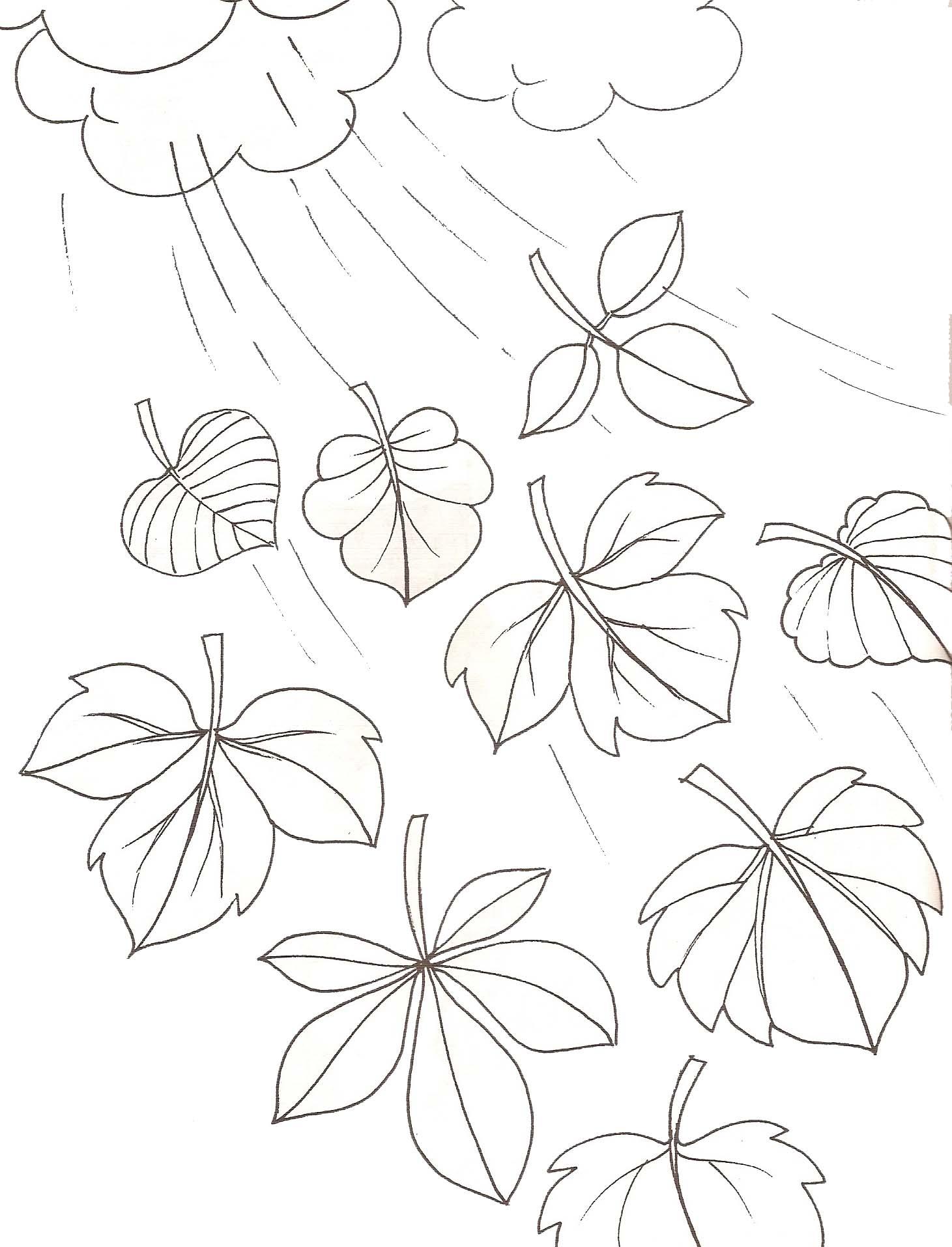 coloriage à dessiner d'automne à colorier
