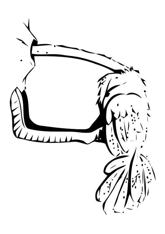 coloriage à dessiner d'une autruche