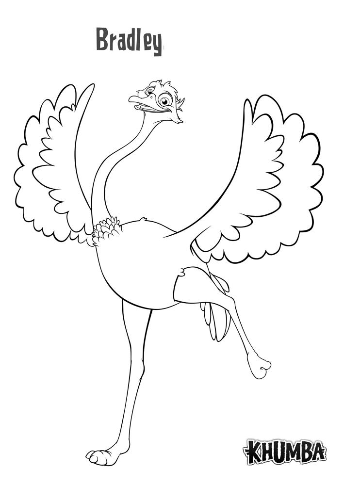 coloriage à dessiner d'autruche gratuit