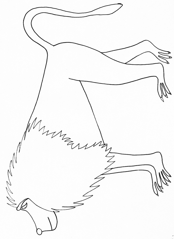 dessin de babouin