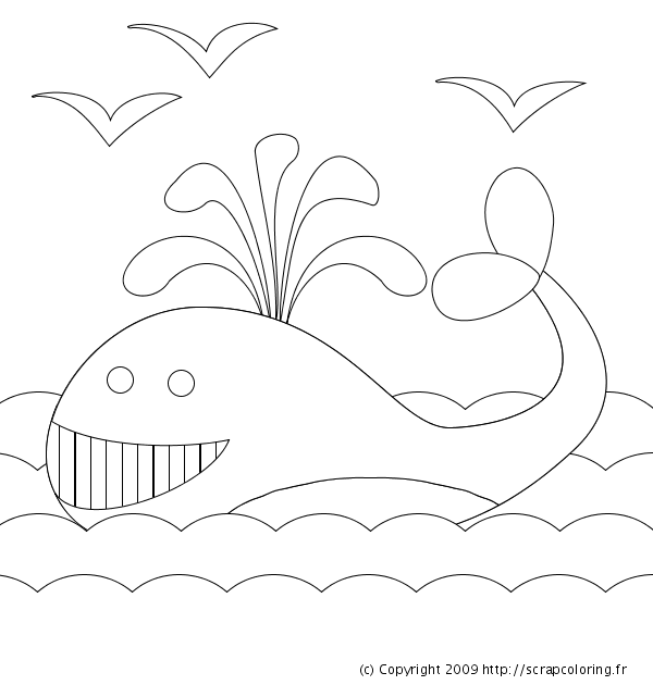 dessin baleine imprimer
