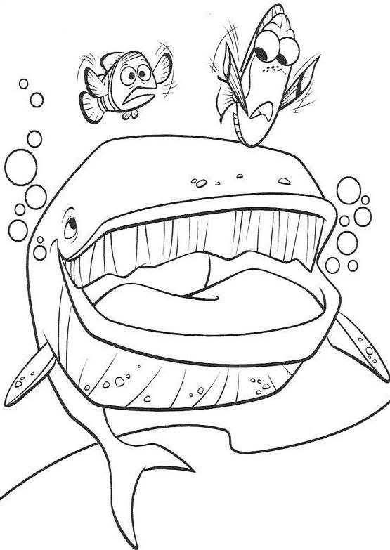 dessin à imprimer requin baleine