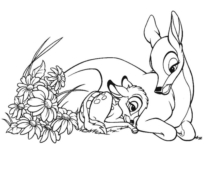 dessin dessin bambi