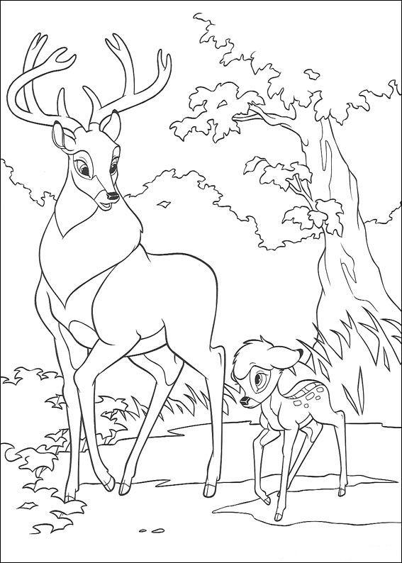 dessin bambi gratuit