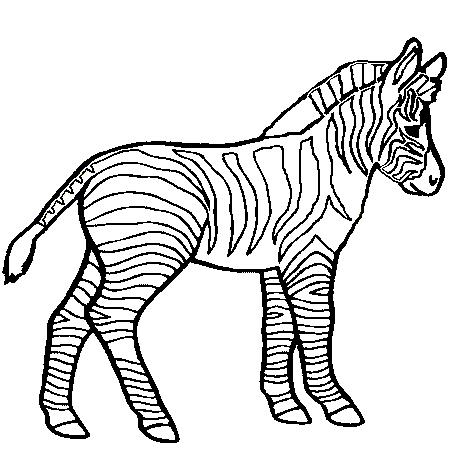 20 dessins de coloriage b b z bre imprimer - Dessin zebre facile ...