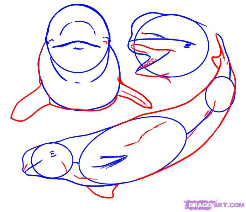 coloriage � dessiner beluga a imprimer