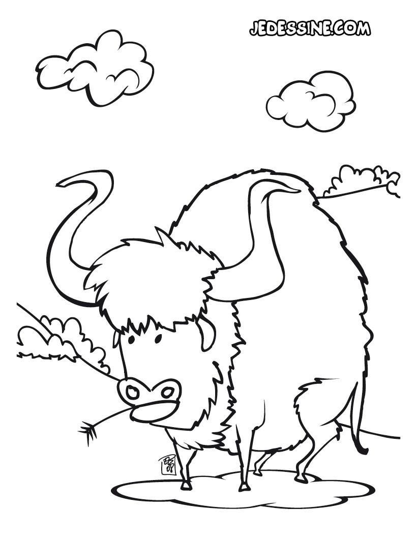 dessin � colorier bisons