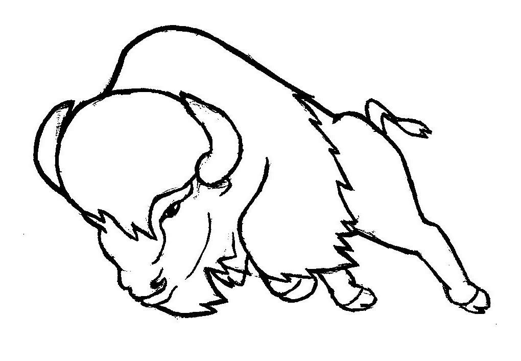 dessin à imprimer bison