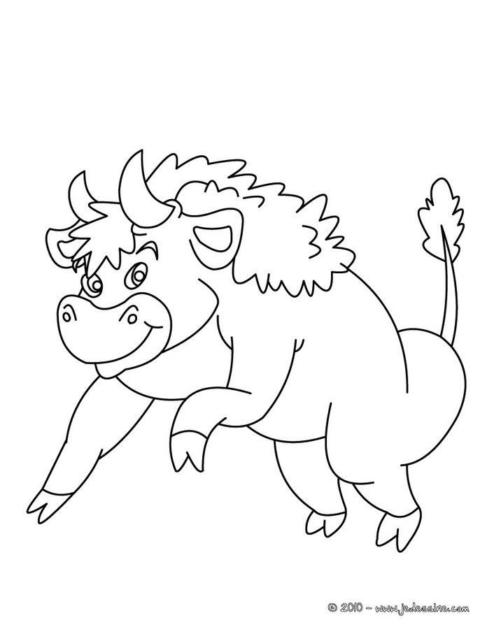 coloriage gratuit de bison