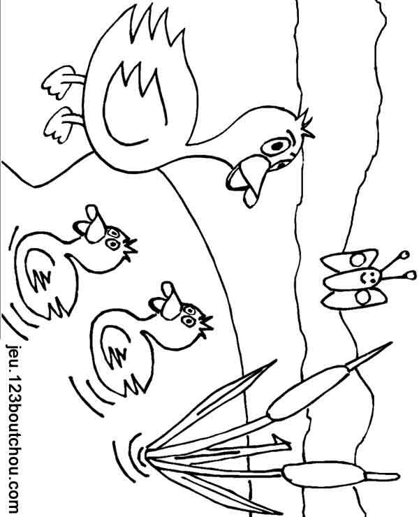 20 dessins de coloriage canard et caneton imprimer - Babouin et belette ...