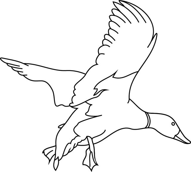 dessin à colorier peche au canard