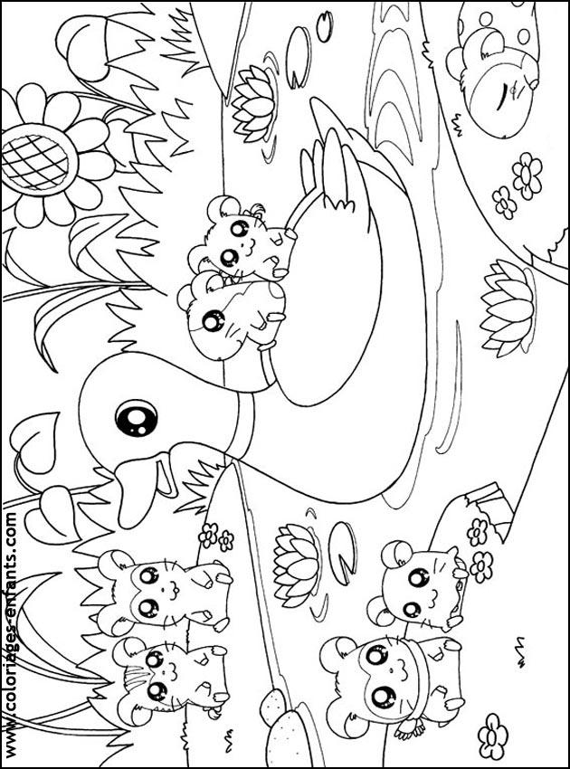 Coloriage dessiner de canard a imprimer gratuit - Image canard a imprimer ...