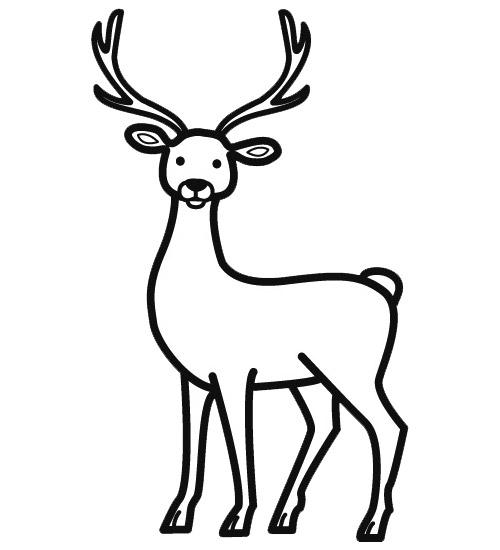 dessin cerf et biche